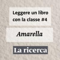 amarella_small
