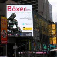 boxer_small