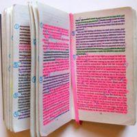 literaryOrganism_small