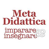 metadidattica2_small