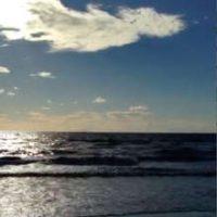 montecr1_small